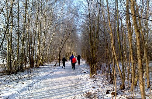 Läufer-Gruppe im Schnee bei strahlender Sonne