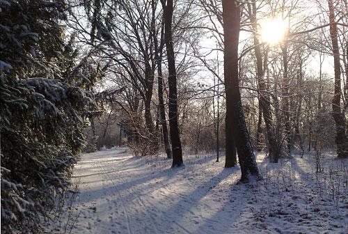 Gutspark Marienfelde im Winter