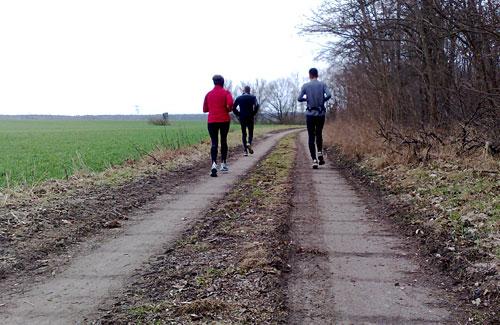 Läufer neben großem Feld