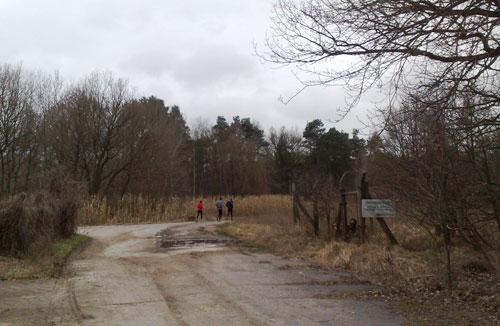 Läufer vor einem alten Maisfeld