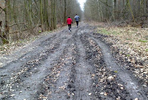 Waldweg mit tiefen Rinnen im Matsch
