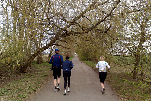 Läufer und Läuferinnen auf einem Weg zwischen Feldern