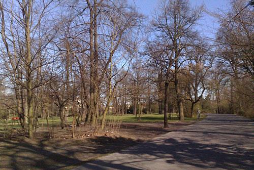 Parkweg in der Hasenheide