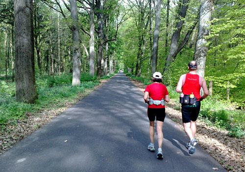Läufer auf Asphaltweg im Wald