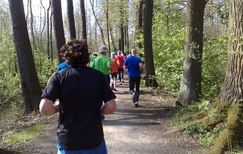 Läufer des Spreewald-Halbmarathon auf einem Waldpfad