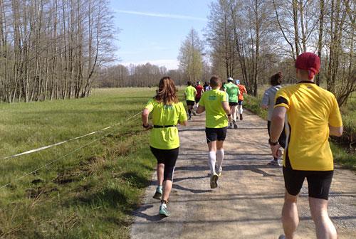 Läufer auf Weg zwischen Wiesen