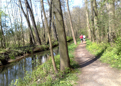 Läufer neben Spreewald-Kanal