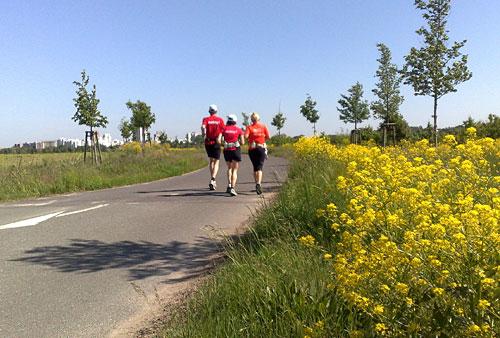 Läuferinnen und Läufer auf Straße