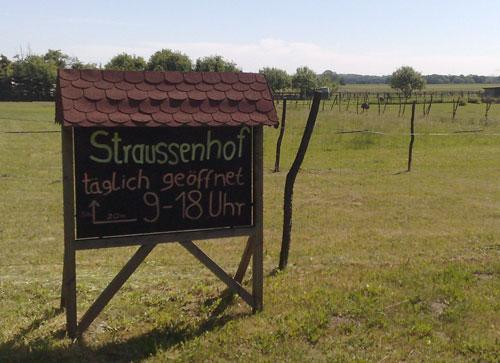 Straußenfarm-Schild mit Straußen im Hintergrund