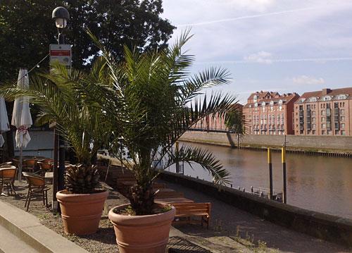 Palmen an einem Restaurant an der Schlachte