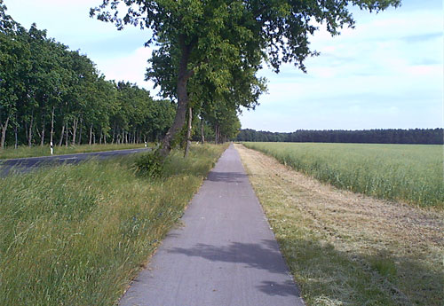 Radweg hinter Neuhardenberg