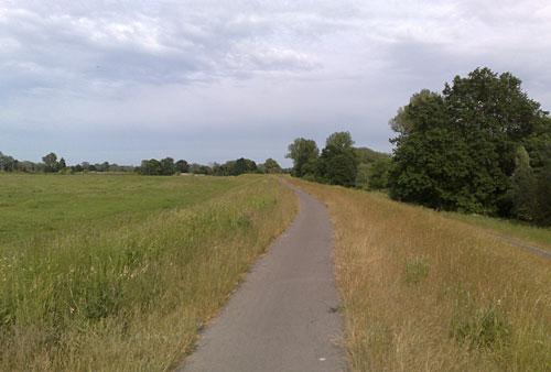 Schmaler Weg auf dem Oderdeich