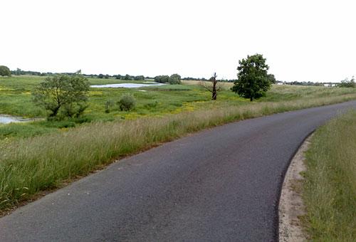 Oderdeich