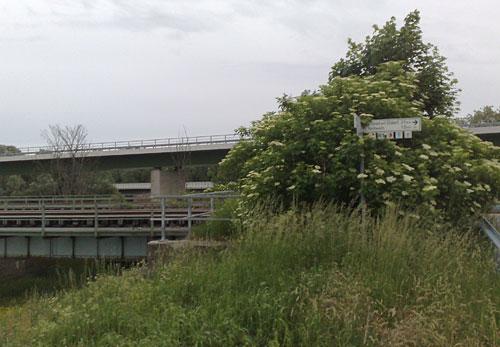 Brücke über die Oder bei Kostrzyn