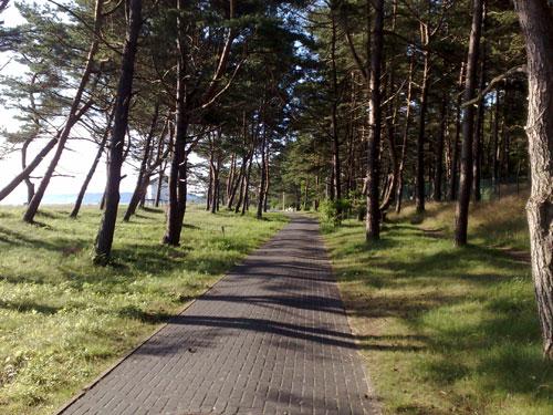 Promenade Richtung Baabe