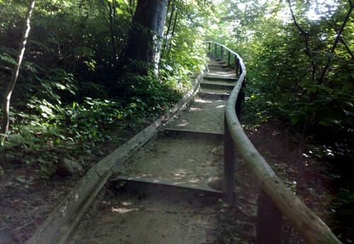 Treppe auf dem Hochuferwanderweg bei Sellin