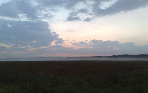 Sonnenaufgang mit Nebel auf den Feldern