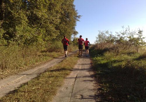 Läufer auf sonnigem Feldweg