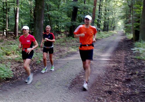 Läufer im Wald auf dem Königsweg