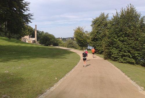 Läufer im Park Babelsberg