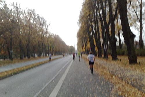 Weit auseinander gezogenes Läuferfeld