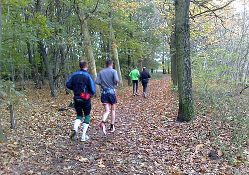 Läufer auf herbstlichem Waldweg
