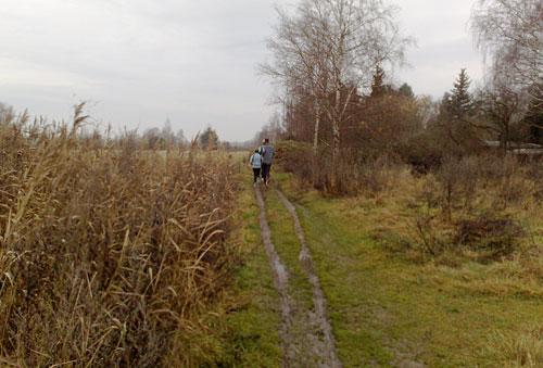 Läufer auf Trampelpfad