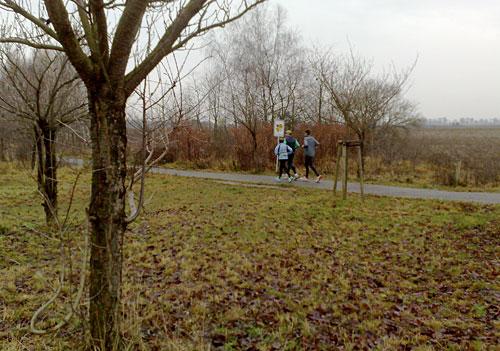 Läufer am Ende der Kirschbaumallee