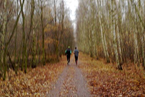 Läufer auf mit Blättern übersätem Mauerweg