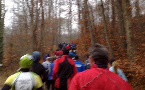 Dichtgedrängte Läufer auf einem ansteigenden Waldweg