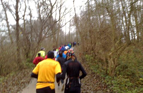 Läufer beim Anstieg auf einem Waldweg am Ratzeburger See