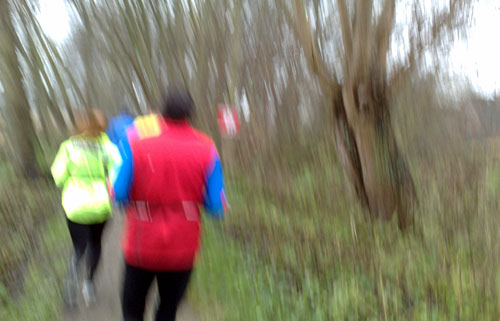 Läuferinnen und Läufer auf schmalem Weg am Ufer entlang