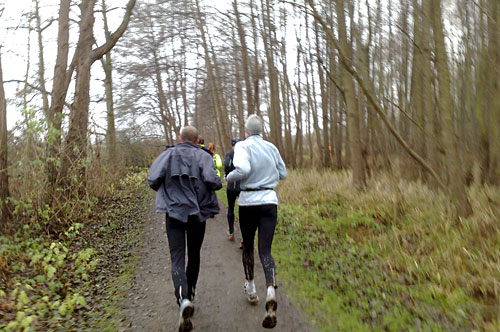 Läufer im Wald am Ratzeburger See