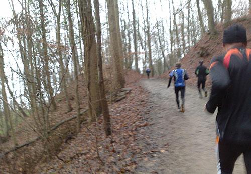 Läufer auf ansteigendem Waldweg am Westufer des Ratzeburger Sees