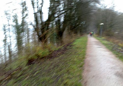 Parkweg am Ratzeburger See