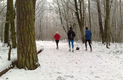 Schneelauf durch den Wald