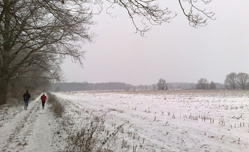 Winter-Schneelandschaft