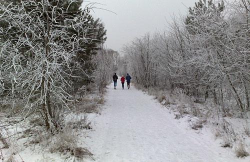 Läufer auf dem verschneiten Berliner Mauerweg