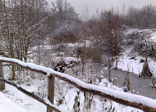 Eine schöne Winterlandschaft im Freizeitpark Marienfelde