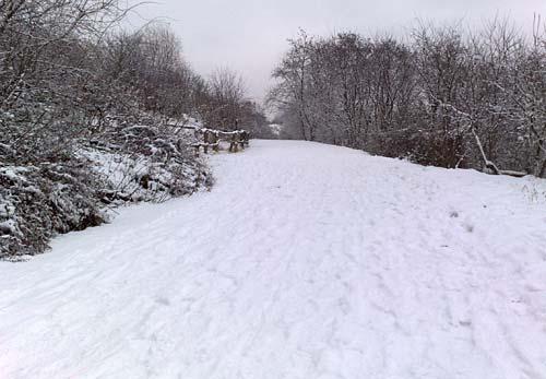 Hügellauf bei Schnee