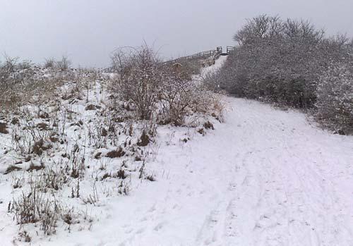 Ein Spurt über Schnee hinauf zum Gipfel