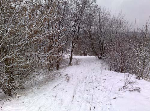 Bergab laufen bei Schnee ist nicht so einfach