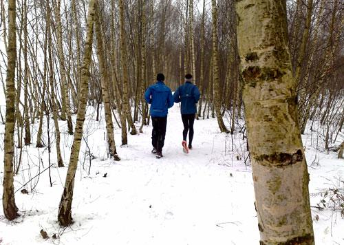 Läufer im winterlichen Birkenwäldchen