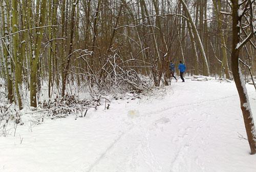 Langer Lauf bei Schnee am Rande von Lichtenrade