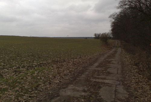 Weg an den Feldern nach Diedersdorf