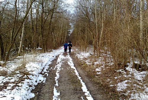Läufer auf Waldweg im Winter