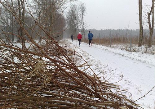 Winterstimmung beim langen Lauf