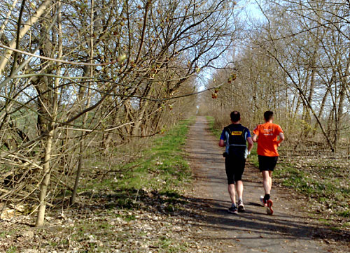 Läufer im Frühling