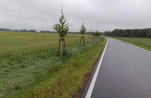 Einsame Straße am Feld