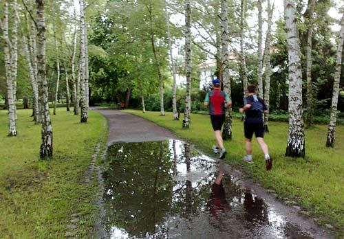 Läufer zwischen Birken mit Pfütze auf dem Weg
